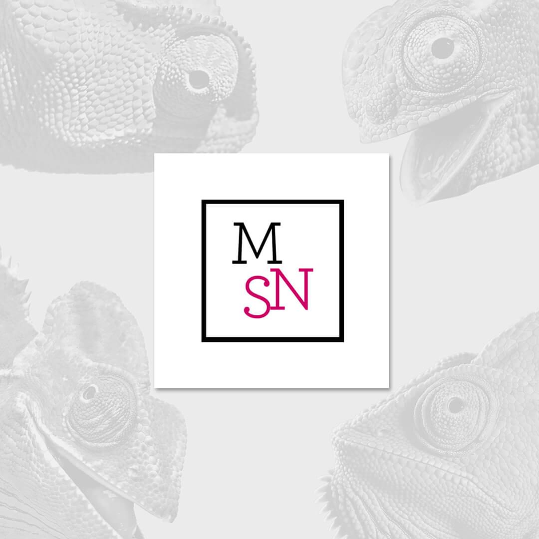 MSN cover