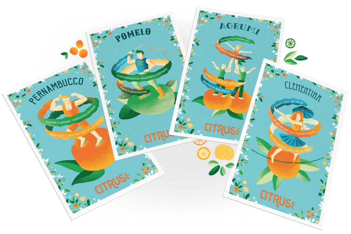 Citrus Festival illustrazioni