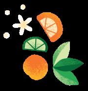 citrus pattern element 3